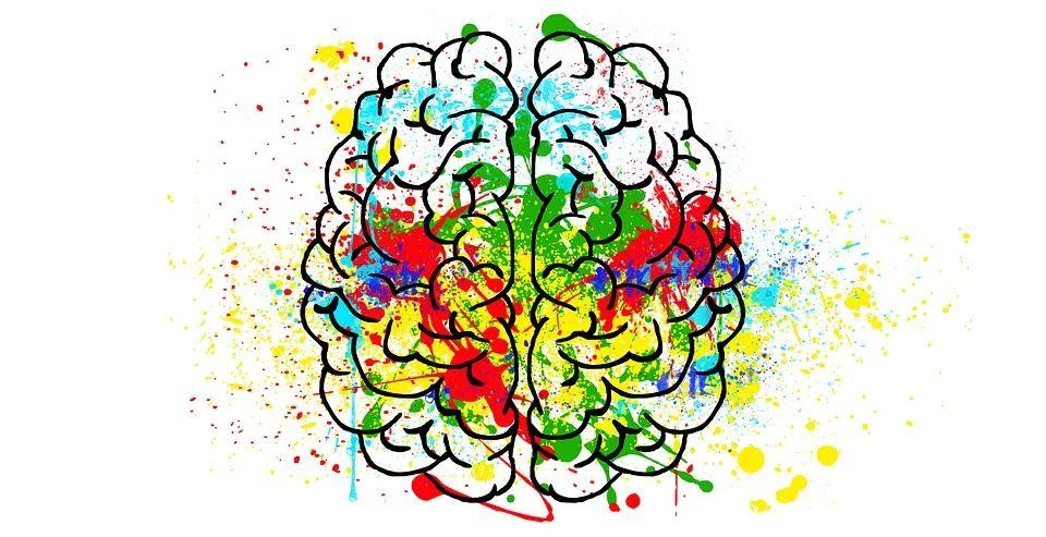 desenho de cérebro com cores que remetem ao desenvolvimento da confiança criativac
